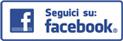 facebook surace